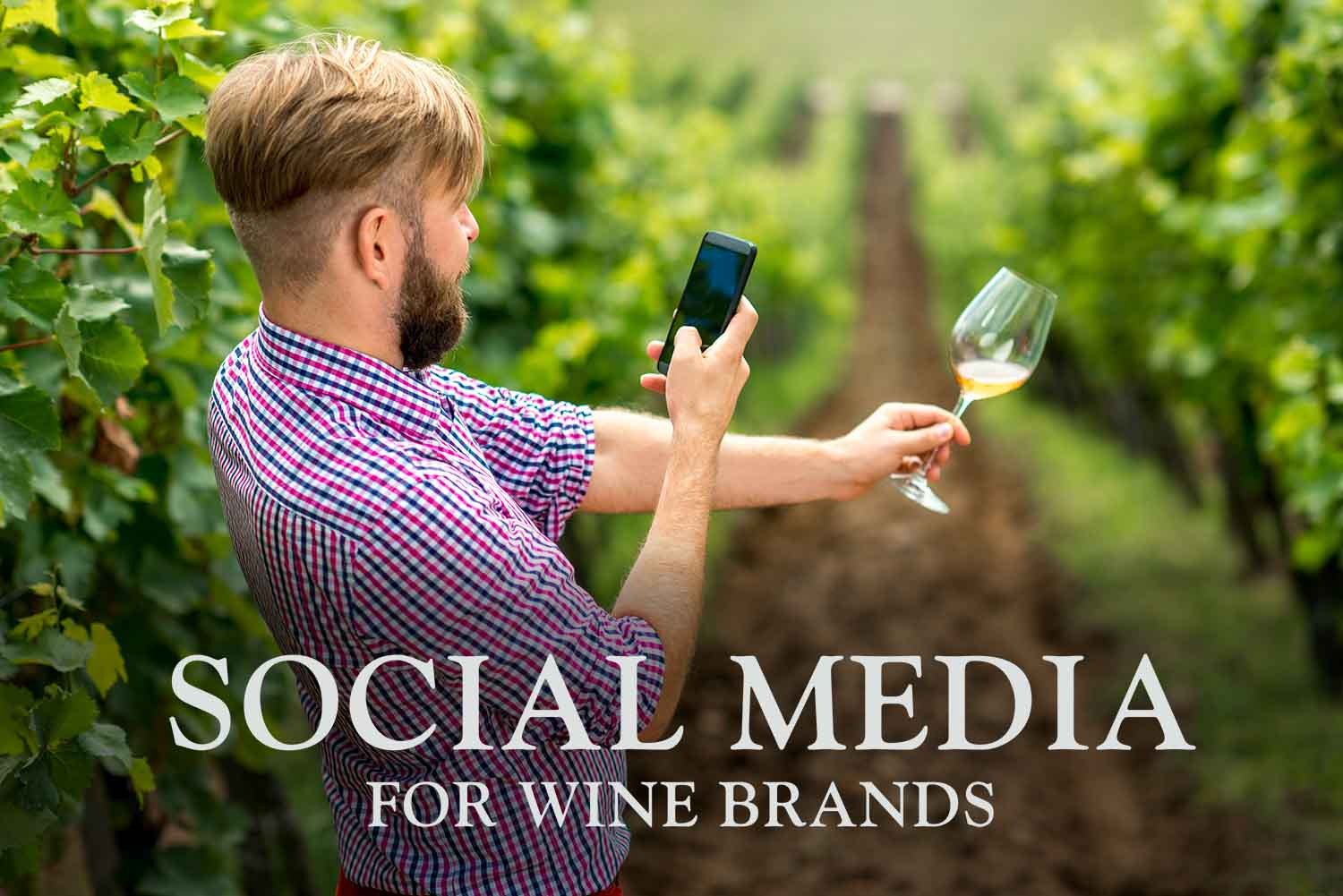 Social Media for Wineries